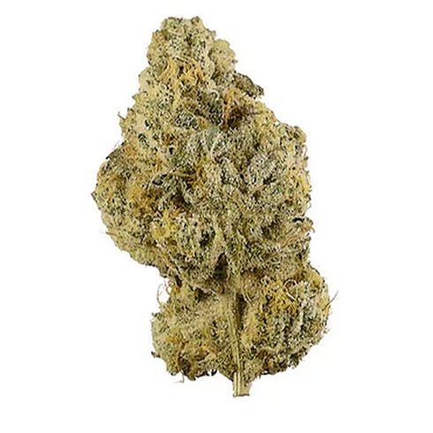 feature image $12g - Champagne Cake