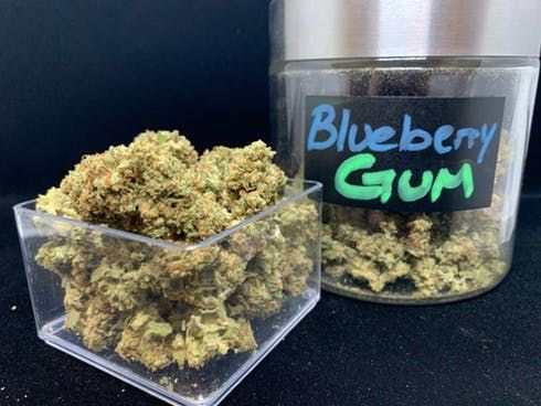 feature image Blueberry Gum