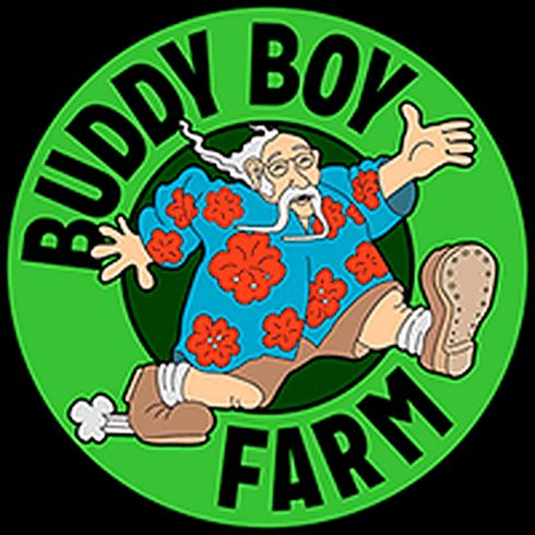 feature image 3 Kings by Buddy Boy Farms