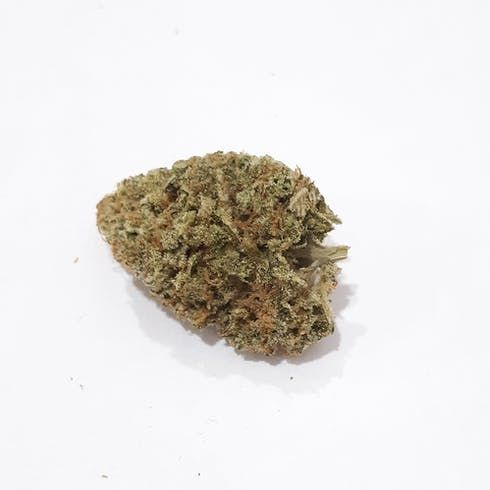 feature image (MCE) Sour Jack
