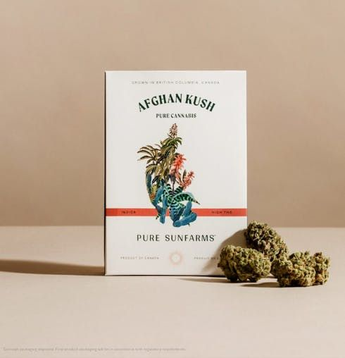 feature image Afghan Kush