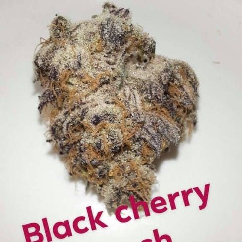 feature image Black Cherry Punch