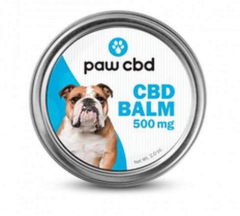feature image  cbdMD - Paw CBD Balm for Pets 2oz 500mg