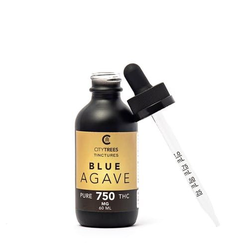 feature image Blue Agave - 750mg - Tincture - City Trees