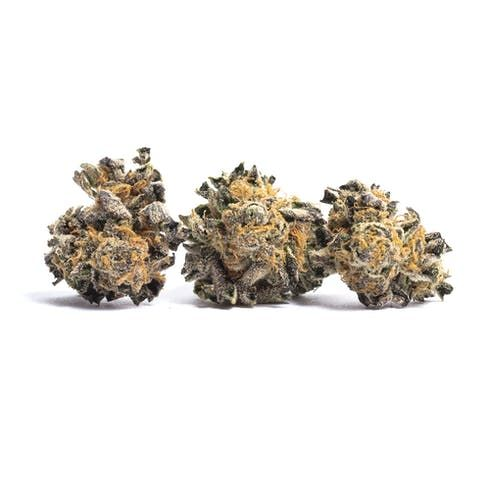 feature image Animal Cookies | $75 oz