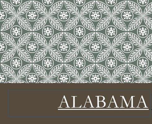 feature image Alabama - Lemon Draiz