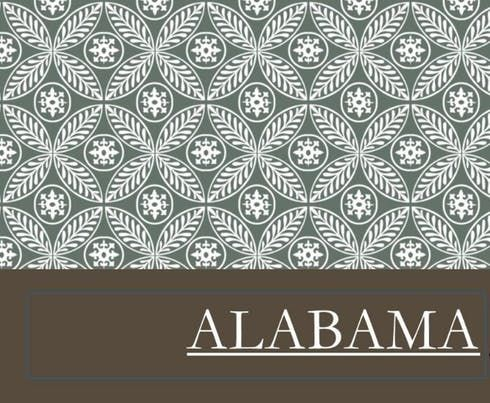 feature image Alabama - Snow Dawg