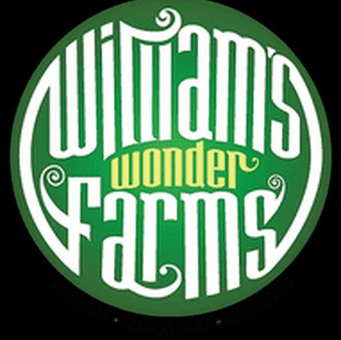 feature image Agent Orange by William's Wonder Farms