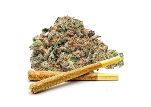 feature image 1g Pre-Roll - Black Jack
