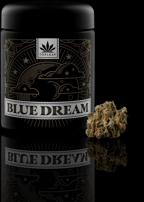 feature image Blue Dream (Top Leaf)