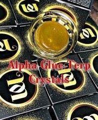 feature image Alpha Glue - Terp Jam