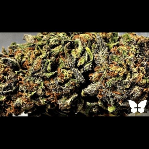feature image Bubba OG
