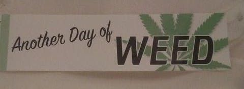 feature image Another Day of Weed Sticker