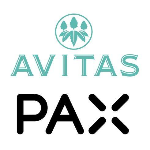 feature image Avitas | .5G Pax Pod | Kimbo Kush