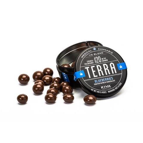 feature image  Blueberry Terra Bites