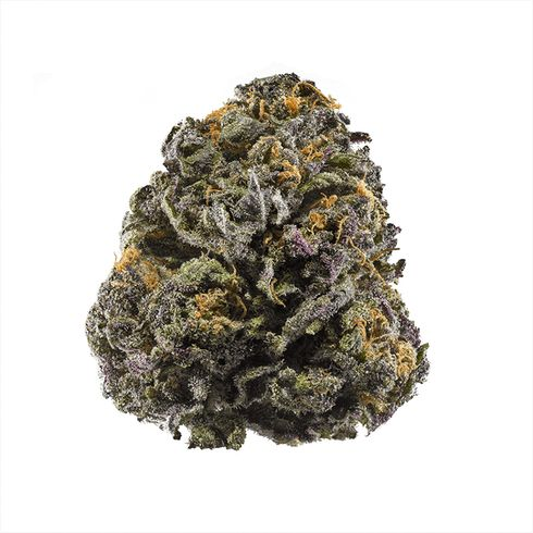 feature image Agrijuana Granddaddy Purple 1g