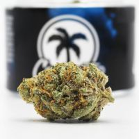 feature image Connected Cannabis Co. - Biscotti - (23% THC)