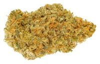 feature image ACAPULCO GOLD - WHISTLER 3.5 G