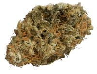 feature image ATOMICAL HAZE - THC BIOMED 3.5 G