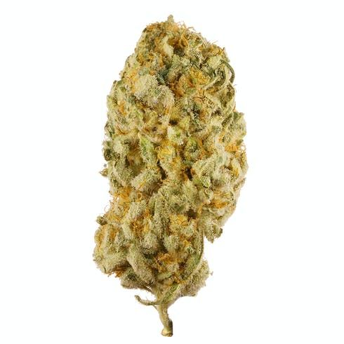 feature image 1g- $10- NW7- Jack Herer