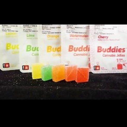 feature image Buddies Jellies 1 -  50mg