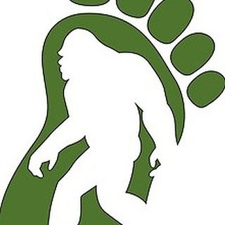 Bigfoot Wellness