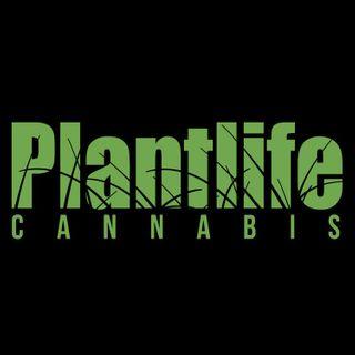 Plantlife Cannabis - Wainwright