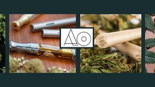 image feature Anacostia Organics