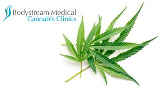 image feature Bodystream Medical Cannabis Clinic - Sudbury