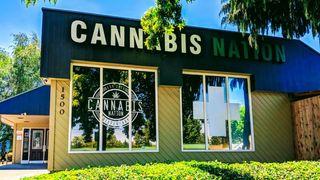 image feature Cannabis Nation Gresham