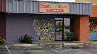 image feature Desert Bloom Releaf Center