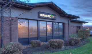 image feature DiamondTREE - Eastside Bend