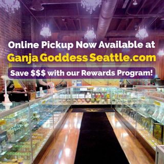 image feature Ganja Goddess Seattle