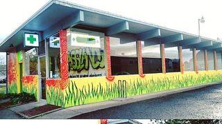 image feature Grasslands Dispensary