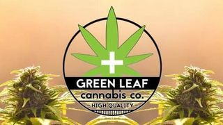 image feature Green Leaf Cannabis - Purcell