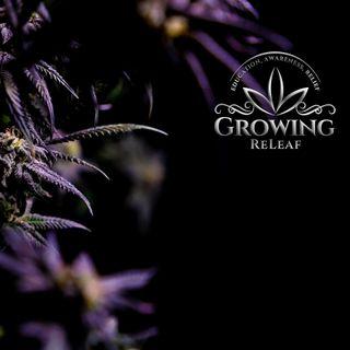image feature Growing ReLeaf - Beaverton