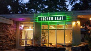 image feature Higher Leaf - Bellevue