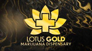 image feature Lotus Gold Dispensary by CBD Plus USA - Robinson