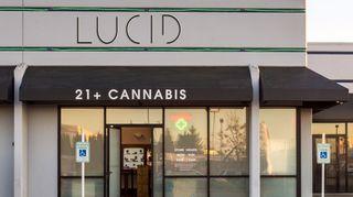 image feature Lucid - Auburn