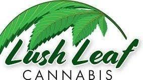 image feature Lush Leaf Cannabis - Esterhazy