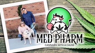 image feature Med Pharm