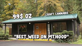 image feature Mt Hood Cannabis Co.