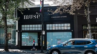 image feature Muse Cannabis Store - Vancouver