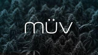 image feature MUV - Phoenix