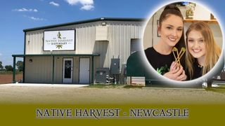 image feature Native Harvest Newcastle