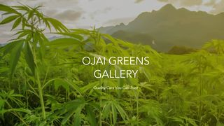 image feature Ojai Greens