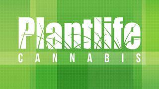 image feature Plantlife Cannabis - Cochrane