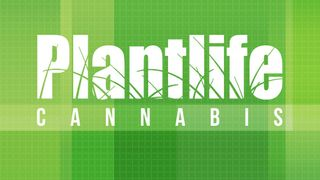 image feature Plantlife Cannabis - Jagare Ridge