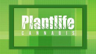 image feature Plantlife Cannabis - Wainwright