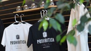 image feature Prohibition Falls